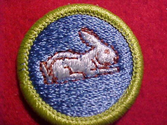 RABBIT RAISING, MERIT BADGE WITH CLEAR PLASTIC BACK, GREEN BORDER, NO IMPRINTS/LOGOS IN PLASTIC, 1972-1993