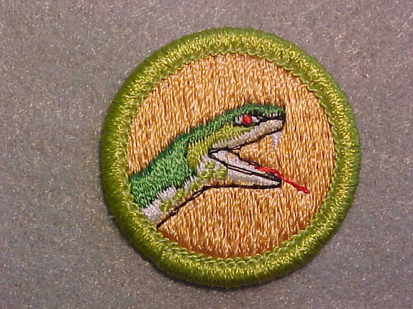 REPTILE STUDY (SNAKE HEAD) 1972-93, MERIT BADGE WITH CLEAR PLASTIC BACK, GREEN BORDER, NO IMPRINTS/LOGOS IN PLASTIC