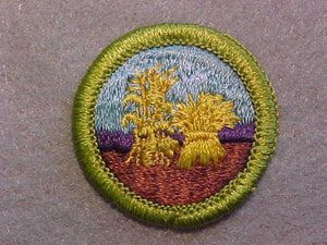 SMALL GRAINS, MERIT BADGE WITH CLEAR PLASTIC BACK, GREEN BORDER, NO IMPRINTS/LOGOS IN PLASTIC