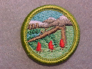 WILDERNESS SURVIVAL, MERIT BADGE WITH CLEAR PLASTIC BACK, GREEN BORDER, NO IMPRINTS/LOGOS IN PLASTIC