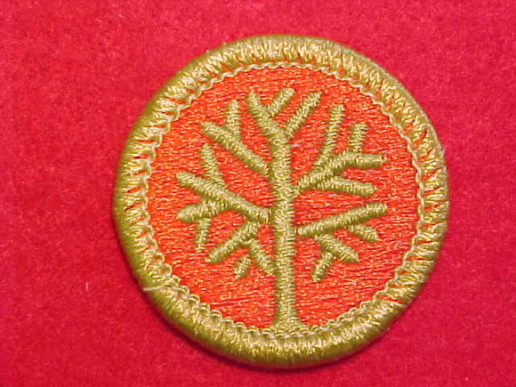GENEALOGY, MERIT BADGE WITH CLEAR PLASTIC BACK, GREEN BORDER, NO IMPRINTS/LOGOS IN PLASTIC