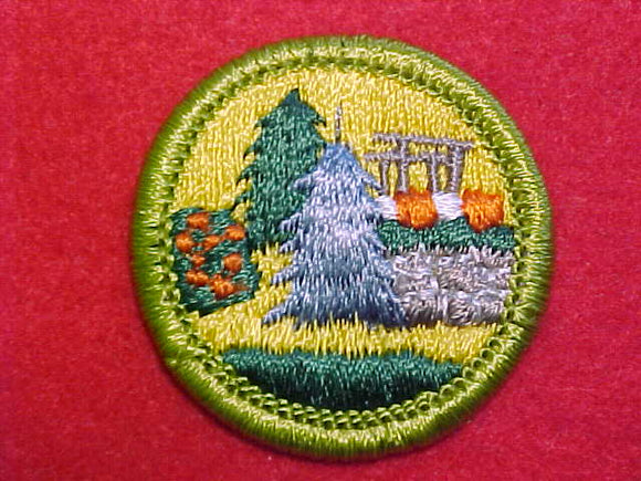 LANDSCAPE ARCHITECTURE, MERIT BADGE WITH CLEAR PLASTIC BACK, GREEN BORDER, NO IMPRINTS/LOGOS IN PLASTIC