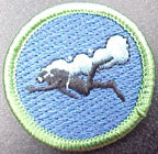 scuba spoof merit badge