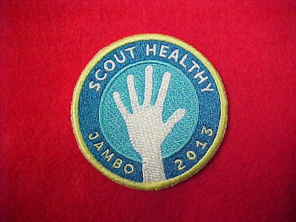 2013 Scout Healthy Patch