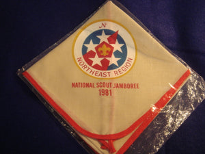 81 NJ northeast region neckerchief