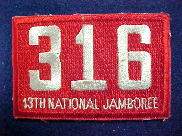 93 NJ troop 316 patch