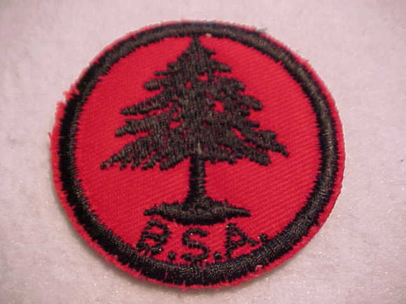 PINE TREE, RUBBER BACK