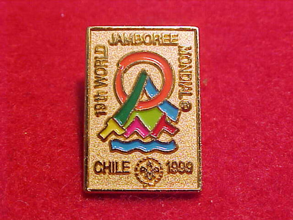 1999 WJ PIN, GOLD BACKGROUND, 14X21 MM