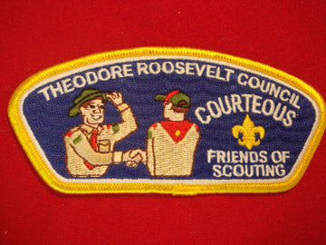 Theodore Roosevelt C (NY) sa13, Courteous, Yellow Bdr.