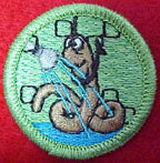 worm washing spoof merit badge