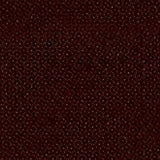 Jacquard Acid Dyes Brown 635