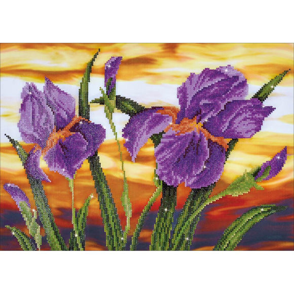 diamond art canvas iris sunset purple reds orange