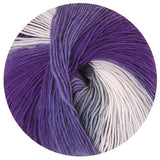 mary maxim prism yarn iris