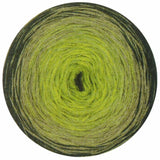 knitting fever online yarns fashion box no.1 gradient yarn lime forest sage 10
