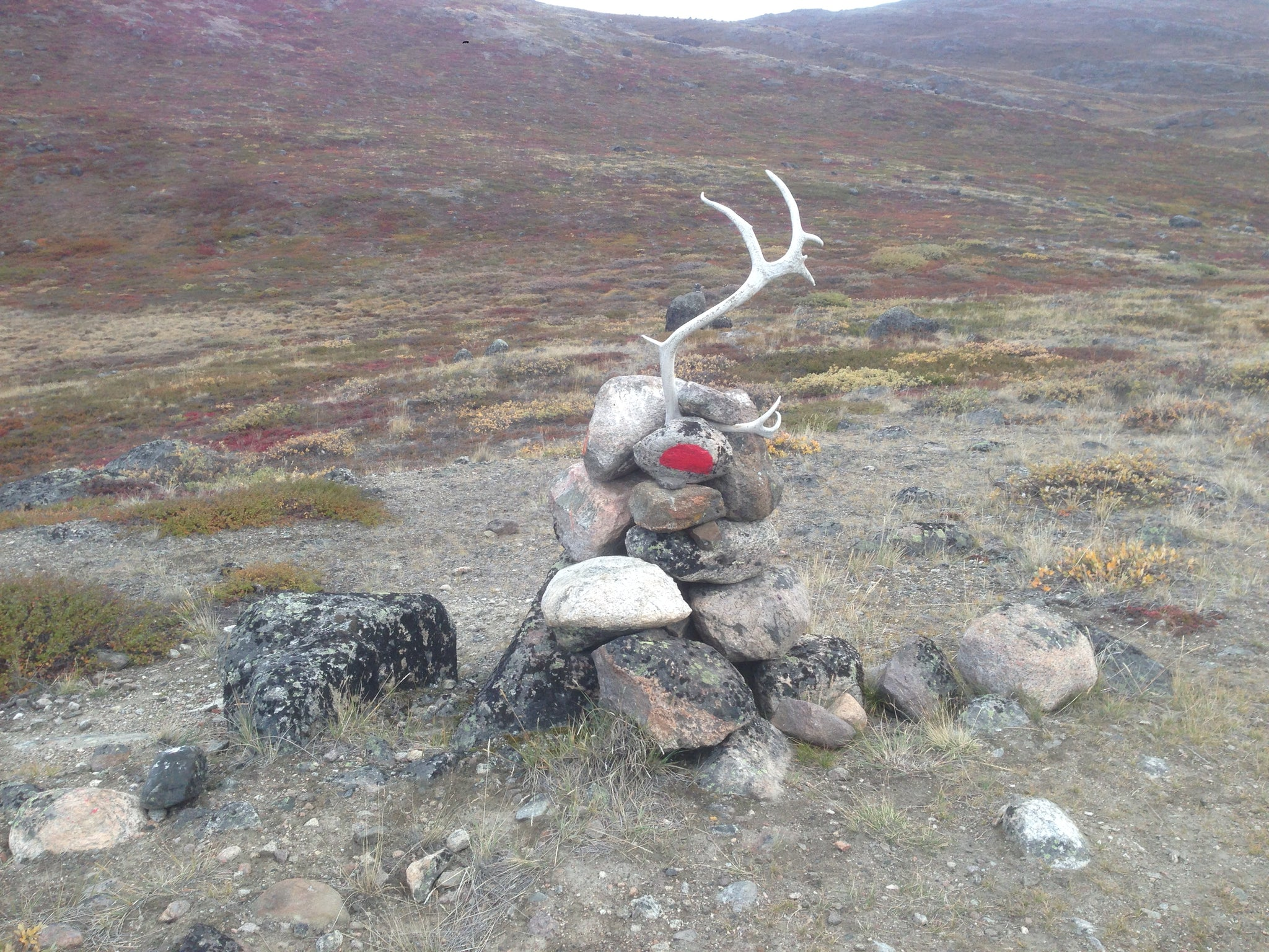Reindeer Antler Cairn, Arctic Circle Trail, Greenland