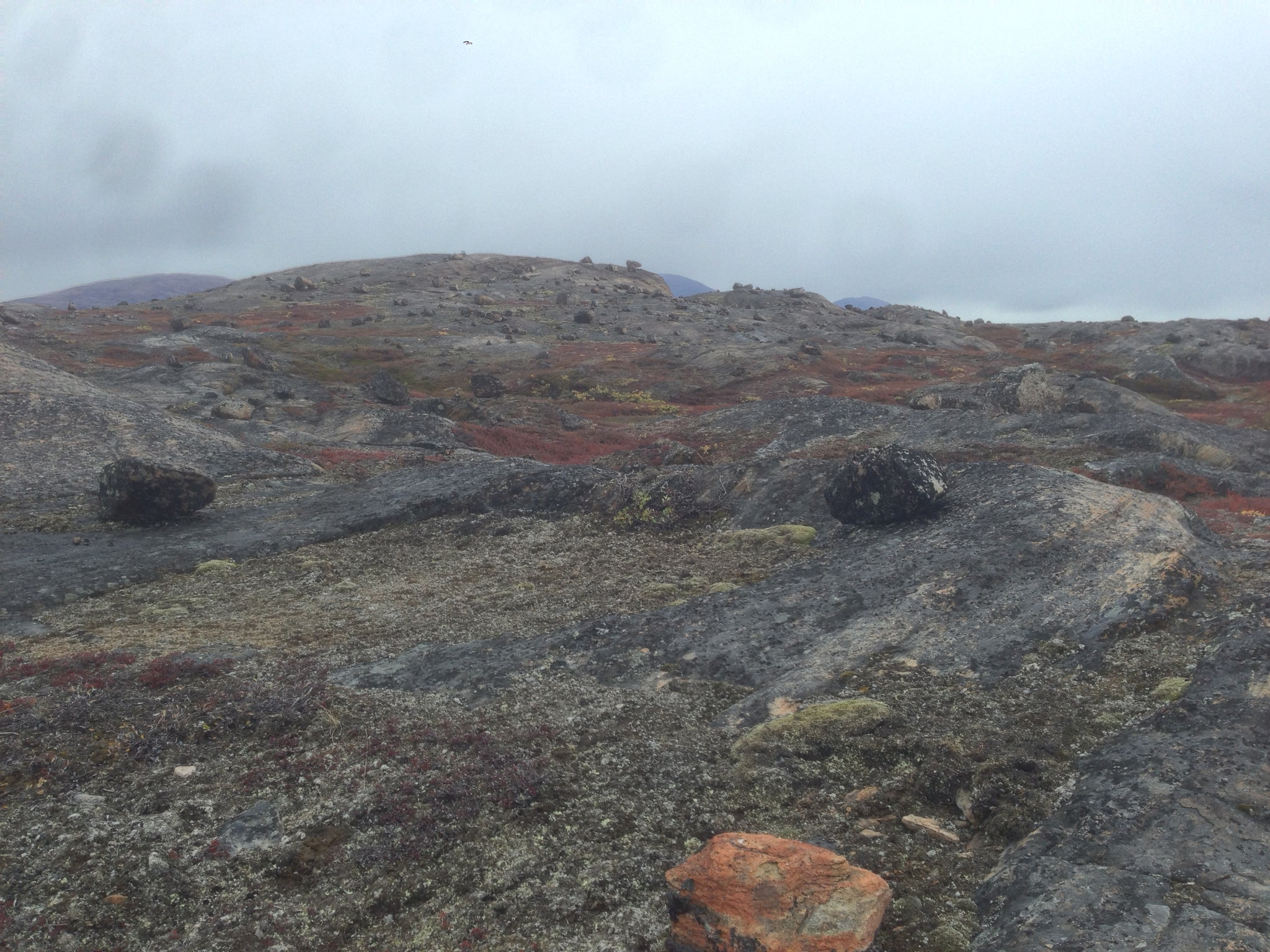 Glacial Erratics, Greenland (Arctic Circle Trail)