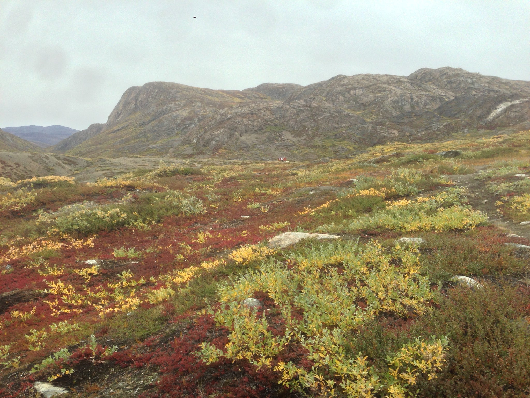 Approaching Eqalugaarniarfik Hut (At center, up against the mountain), Greenland (Arctic Circle Trail)