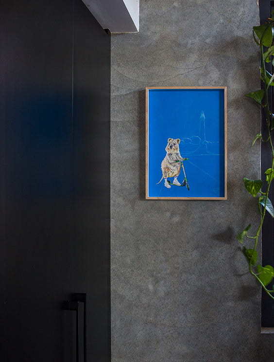 Concrete wall in kitchen, featuring Rottnest Island Quokka print, Bakery Run.