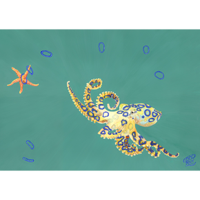 A painting of a blue ringed octopus playing quoits with a starfish. The blue ringed octopus found off the coast of Western Australia. Painted with a predominately teal background. Art print for boys teens bedroom. An artwork for marine life enthusiast.