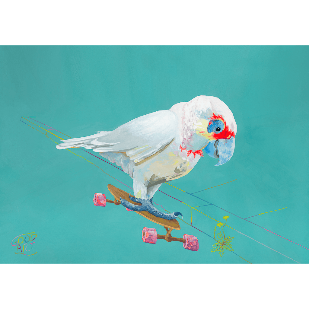 An art print of a Corella riding a skateboard. Australian themed bird artwork for childrens bedroom by Good Art.