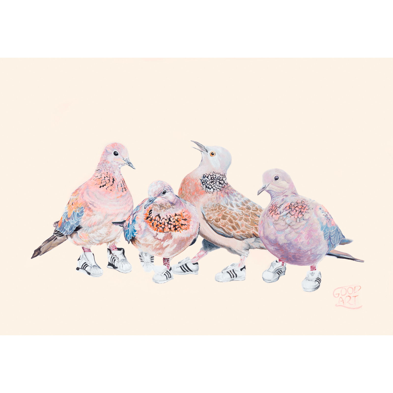 An artwork of Laughing and Spotted Doves. Four birds in total wearing Run DMC adidas sneakers. An Australian bird Art print for a boy or girls bedroom. Painted by Good Art.