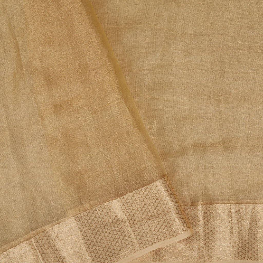 Light Gold Tissue Organza Embroidery Saree With Floral Jaal-225774 - Singhania's