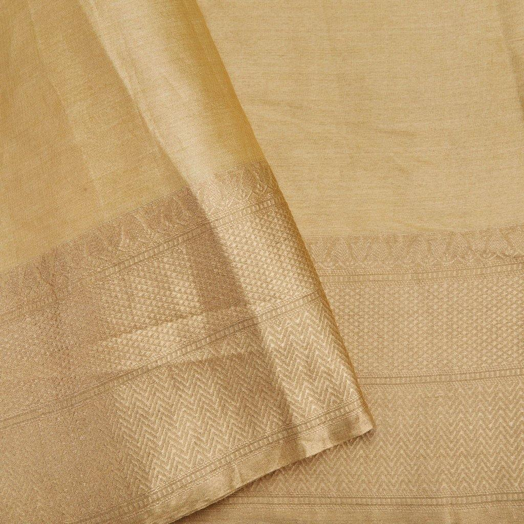 Light Gold Silk Embroidery Saree With Floral Jaal-225854 - Singhania's
