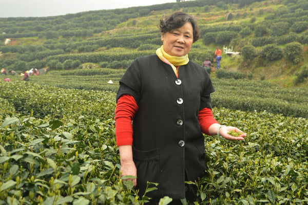 Long Jing Green Tea Farmer