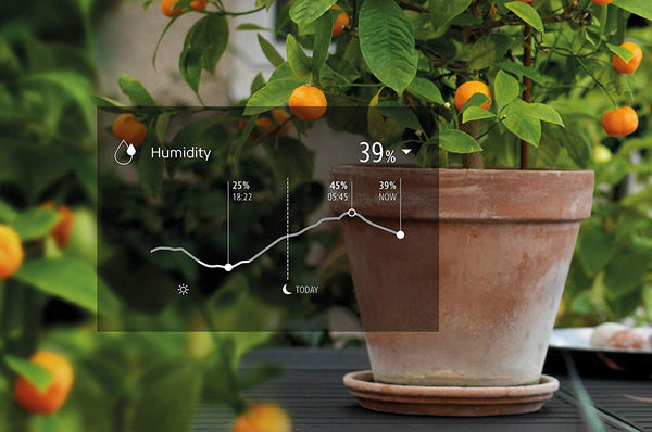 Eve degree plante homekit