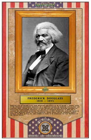 ENLIGHTENED PRECIPICE 3D BLACK HISTORY (AMERICA): Frederick Douglass 3D Special Edition Poster