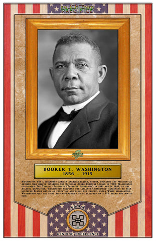 ENLIGHTENED PRECIPICE 3D BLACK HISTORY (AMERICA): Booker T. Washington 3D Special Edition Poster