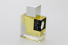 Load image into Gallery viewer, Silver Stone perfume by miguel matos