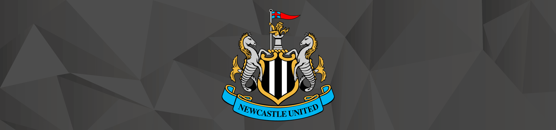 Supporters Newcastle Utd