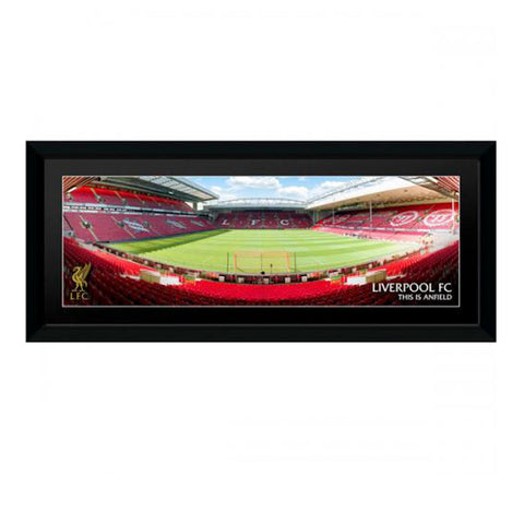 Liverpool Picture Anfield 30x12""