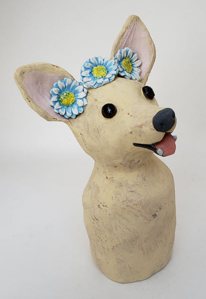 Chelsea the Chihuahua Wearing a Daisy Headband