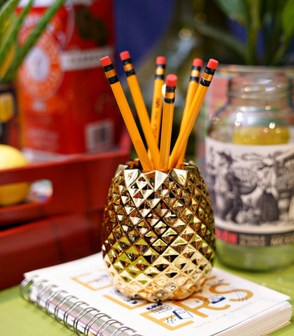Books & Gifts - Pineapple Pencil Cup
