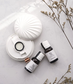 Healing Remedies - Soul Apothecary Portable USB Aroma Diffuser