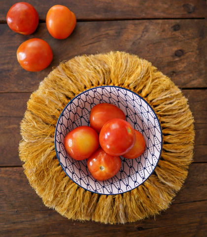 Hot Plates - Abja Abaca Fringe Hot Pad - Set Of 4