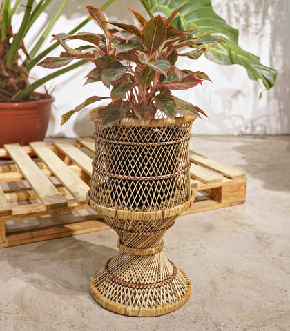 Planter - Rabea Rattan Planter Basket
