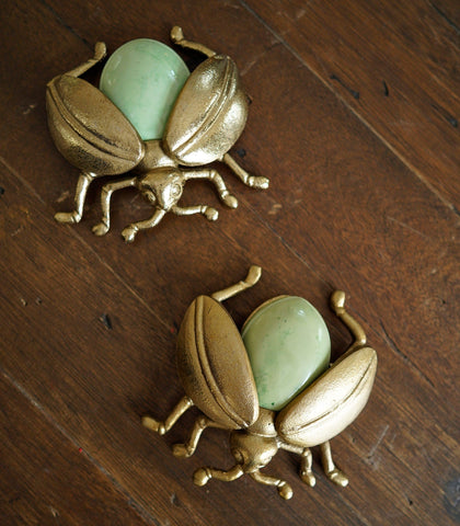 Room Decor - Decorative Bug