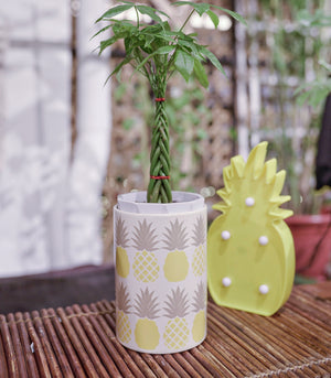 Room Decor - Pineapple Ceramic Jar