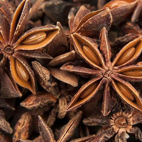 Anise Star Plant close up picture