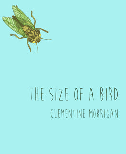 Size of a Bird