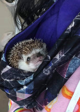 Load image into Gallery viewer, Hedgie Hood