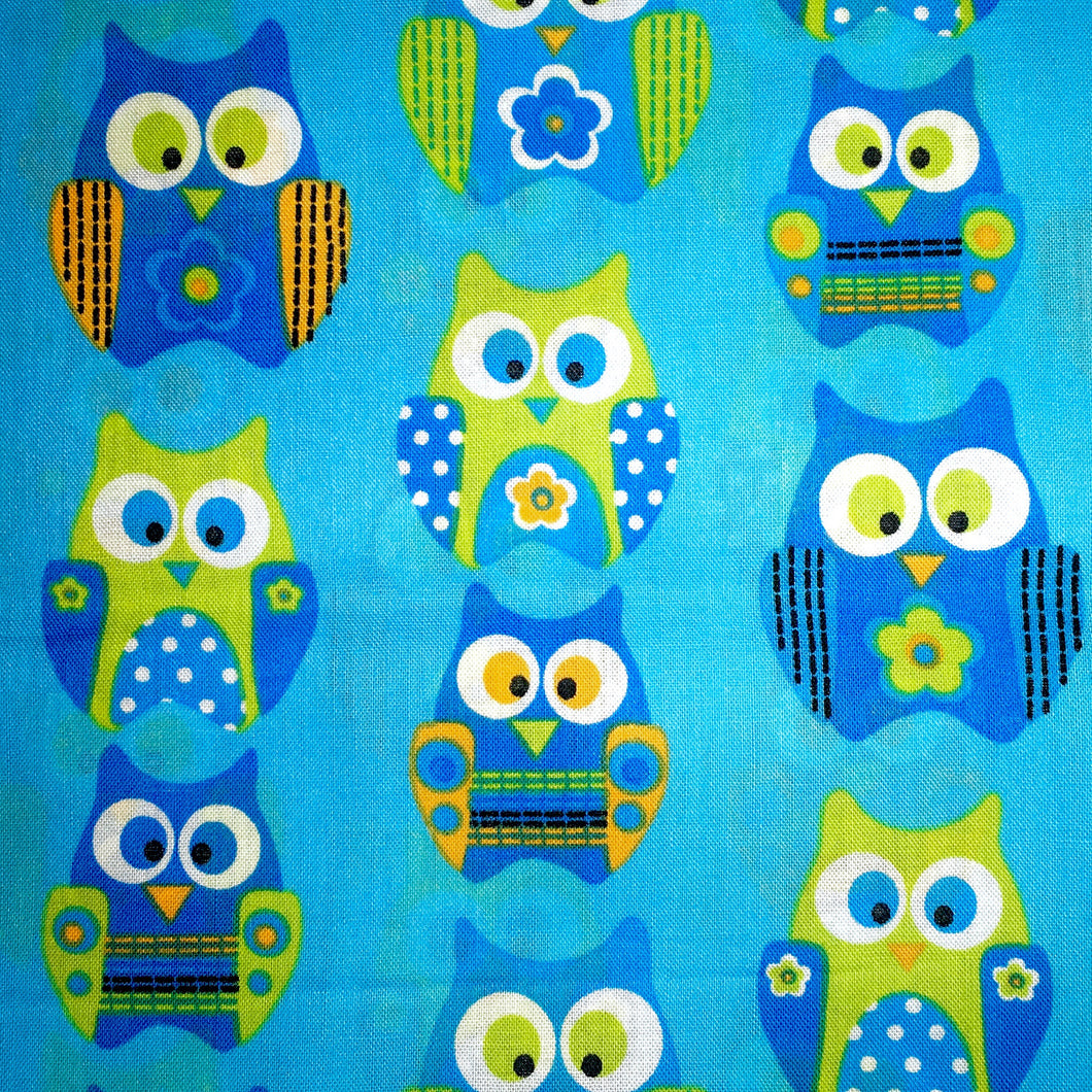 Sleeping Bag - Blue and Green Owls