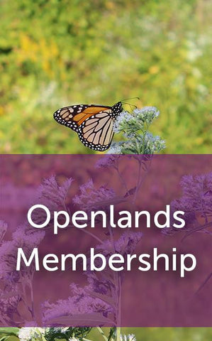 Join Openlands