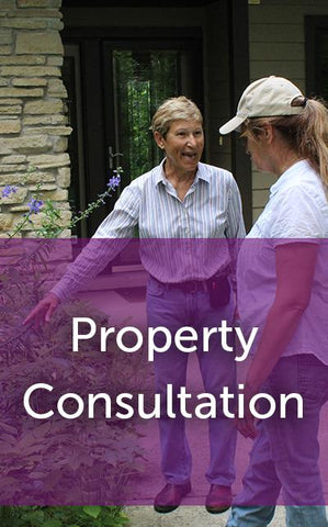 Free Property Consultation