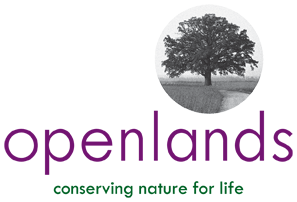 Openlands Native Plant Sale