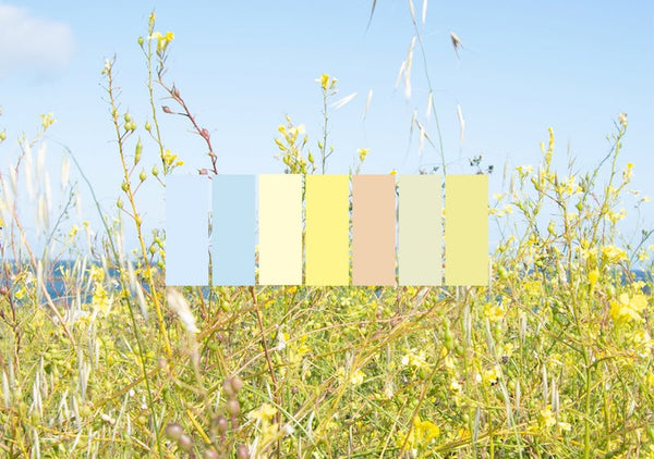 yellow pastel shades of color for wellbeing