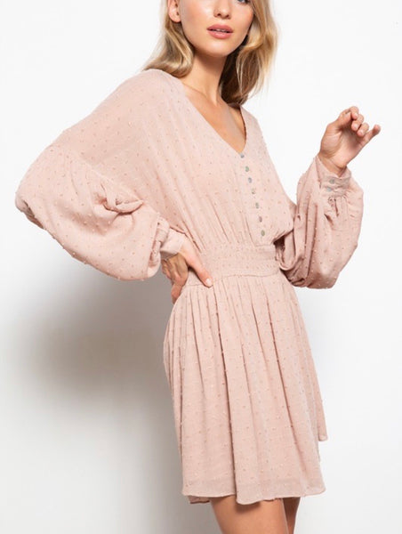 Rose Taupe Swiss Dot Gauze Dress